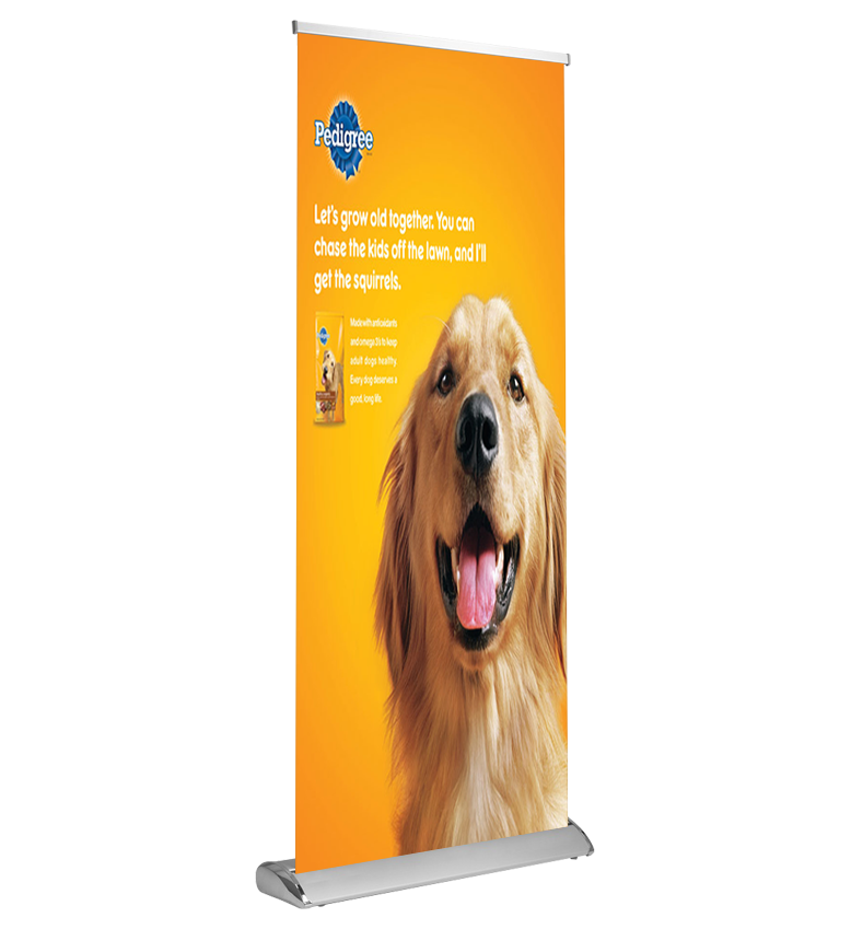 Stand Up Banner With Your  Budget | Order Now